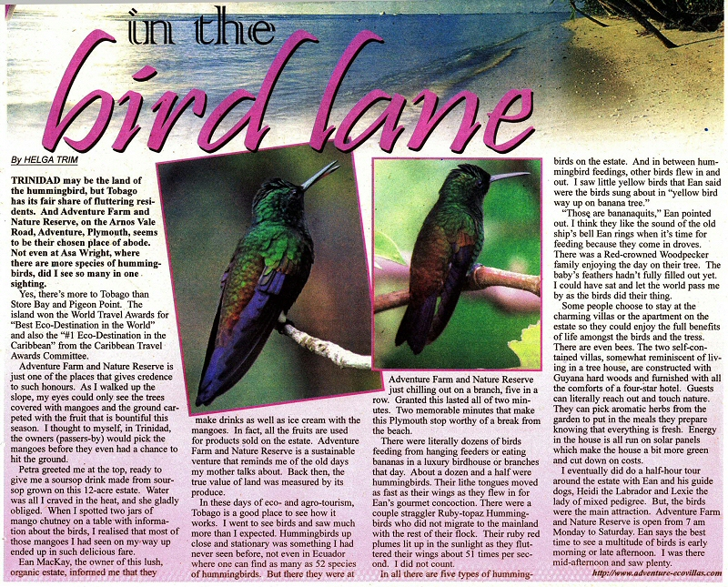 In the Bird Lane, article by Helga Trim in Newsday August 2009